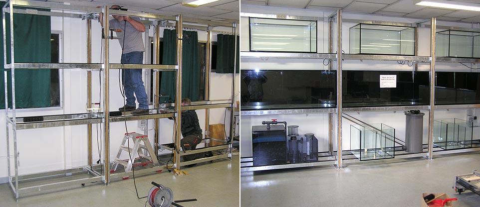 aquarienbau fish reps aquarienbau und terrarienbau. Black Bedroom Furniture Sets. Home Design Ideas