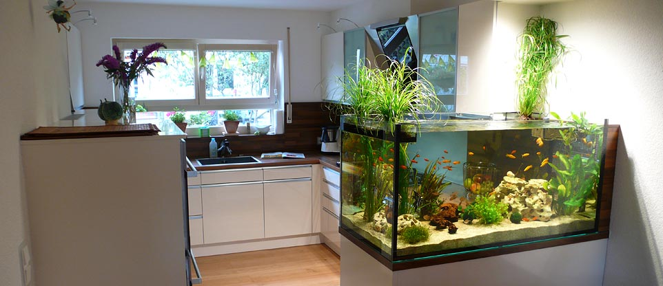 k che mit aquarium fish reps aquarienbau und terrarienbau. Black Bedroom Furniture Sets. Home Design Ideas