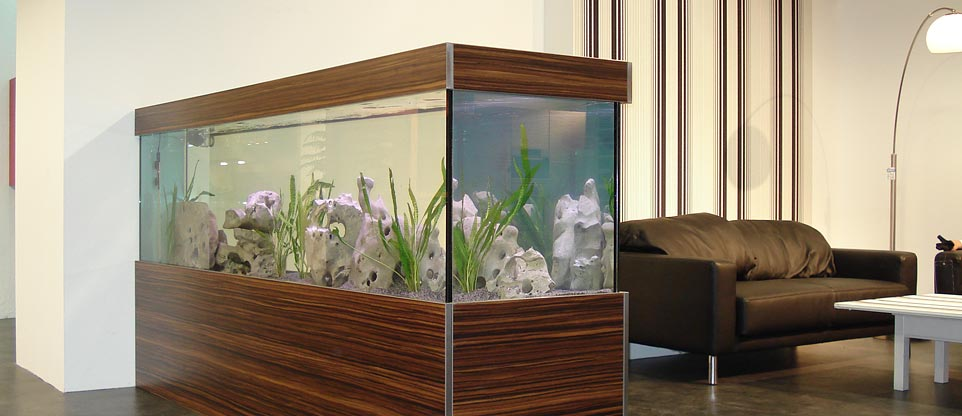 k chenstudio freiburg fish reps aquarienbau und. Black Bedroom Furniture Sets. Home Design Ideas
