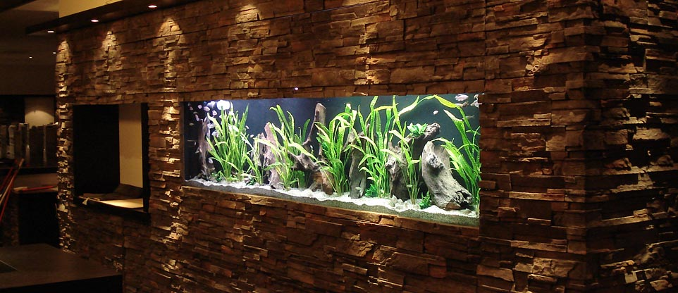 Aquarium in wand home image ideen - Aquarium in der wand ...